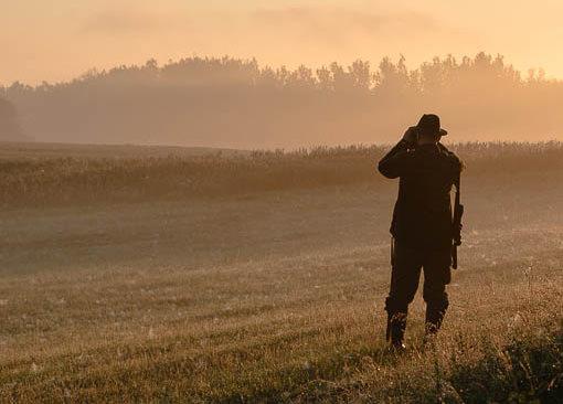 Jagd Im Eigenen Revier